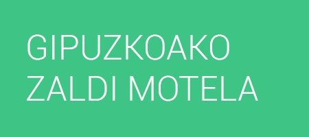 GIPUZKOAKO ZALDI MOTELA