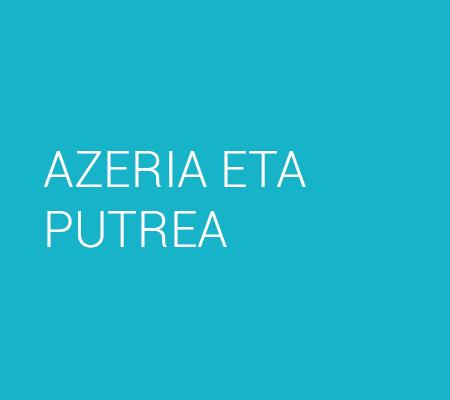 AZERIA ETA PUTREA